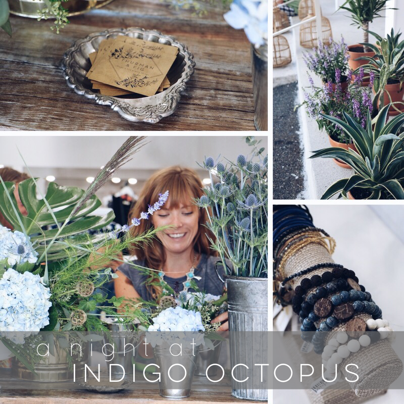 a night at indigo octopus